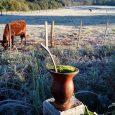 Frio e tempo seco predominam no dia de hoje. O frio segue fazendo parte da rotina do povo gaúcho. Hoje […]