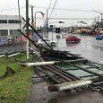Em Porto Alegre, temporal na madrugada deste domingo (23) provocou queda de árvores e fios, bloqueando 11 ruas. Rajadas de […]
